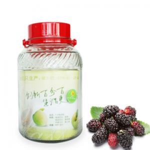 Bình ngâm thông minh đa năng rượu ( hoa quả) 5 lít