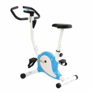 Xe đạp tập thể dục phiên bản mới 2014 - KX2000